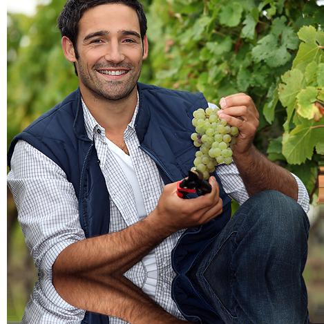 Per la tua cantina di vini